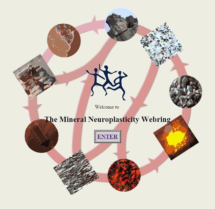mineral neuroplasticity